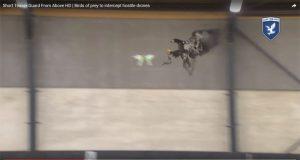 Drone versus Eagle